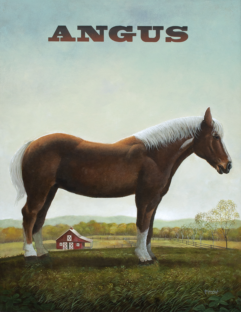 """Angus"" acrylic 36x24"