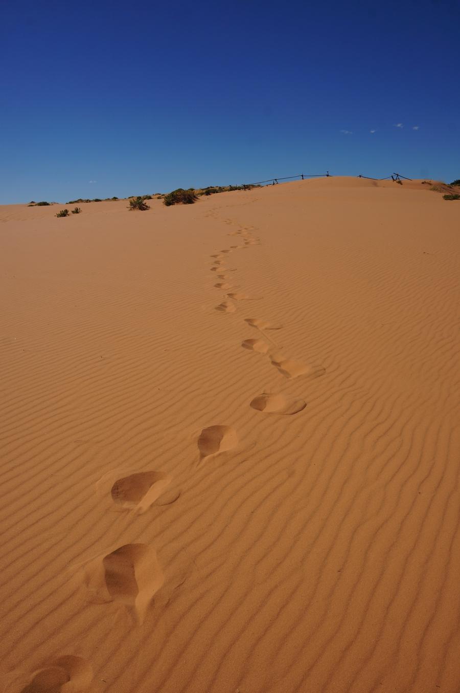 sand-dunes-7.jpg