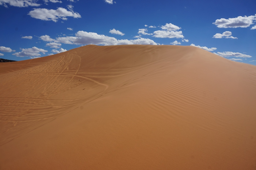 Sand-dunes-3.jpg