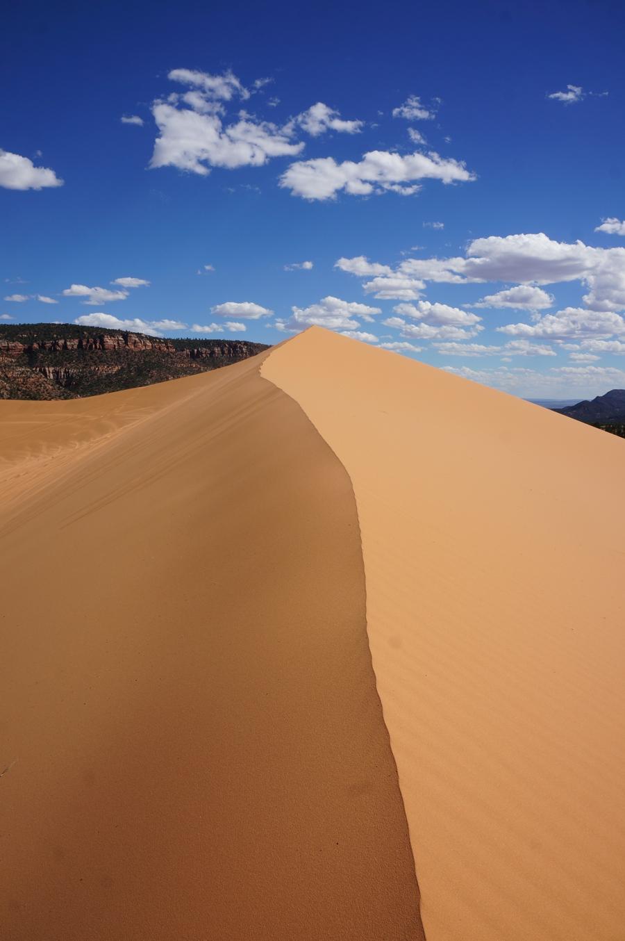 Sand-dunes-4.jpg