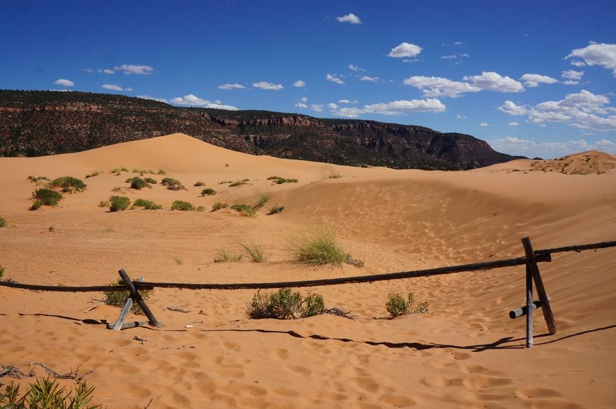Sand-dunes-6.jpg