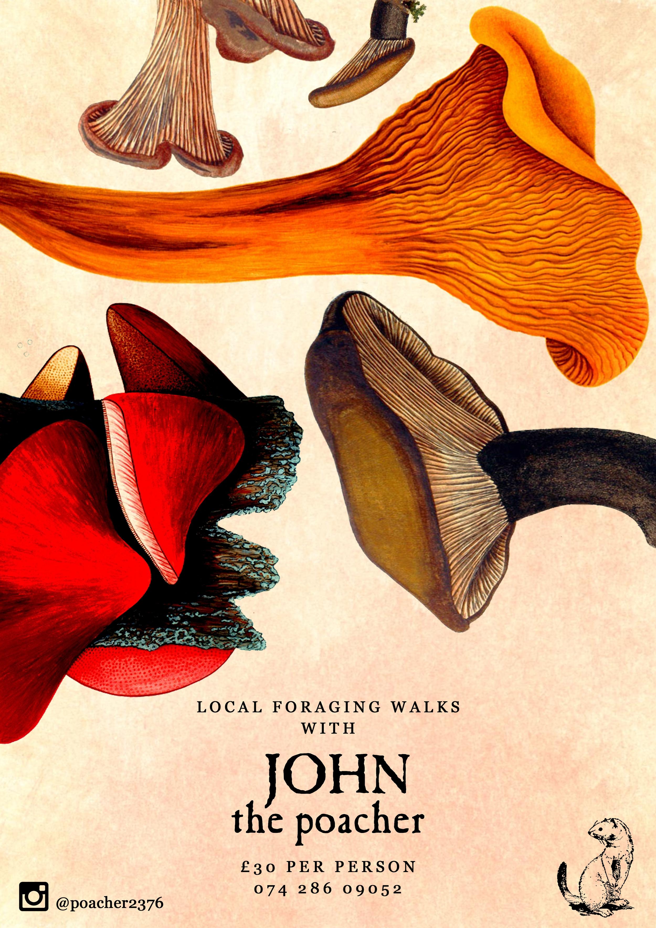 FORAGING WALKS WITH JOHN THE POACHER