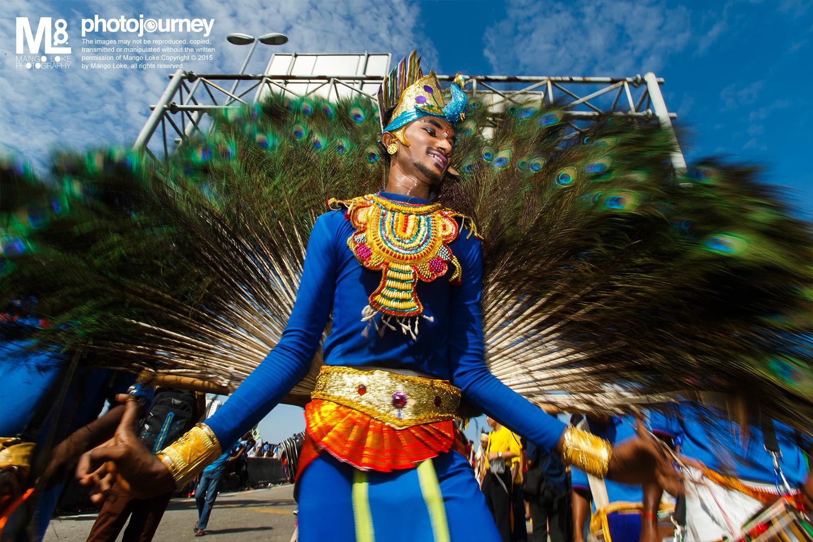 孔雀舞者.大宝森.The Dancing Peacock.Thaipusam 2015  黑风洞. Batu Cave. 2015 CANON1DX 16-35MM F2.8L 1/50 F18 ISO100