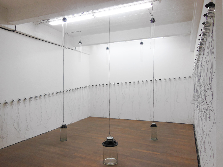 Anamorphone, 2014