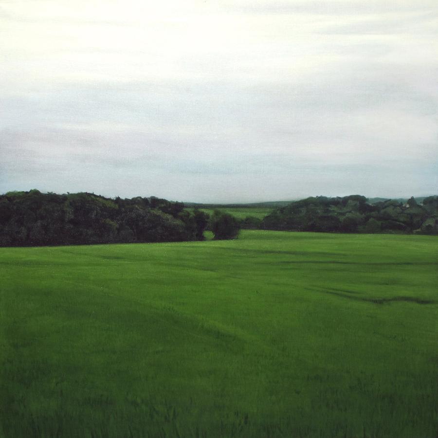 THOMAS LEVY-LASNE   Crépuscule 05 \ Twilight 05, 2012. Huile sur toile \ Oil on canvas. 97 x 97 cm
