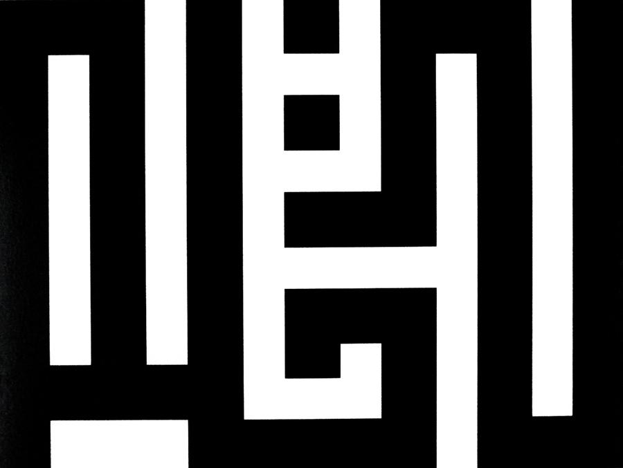 TANIA MOURAUD   IHAVEADREAM - coufique, 2005. Photographie noir et blanc sous diasec \ Blanck & white photograph under Plexiglass.   30 x 40 x 3 cm. Édition 1/3 + 2 EA\AP