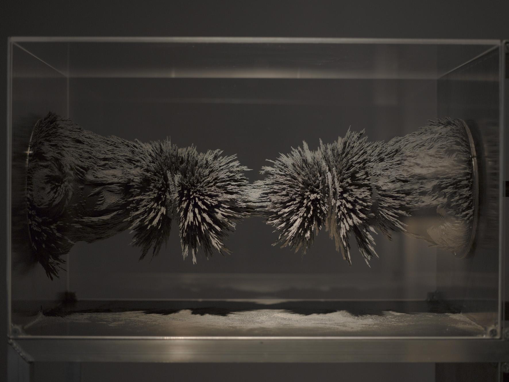 Resonarium, 2011