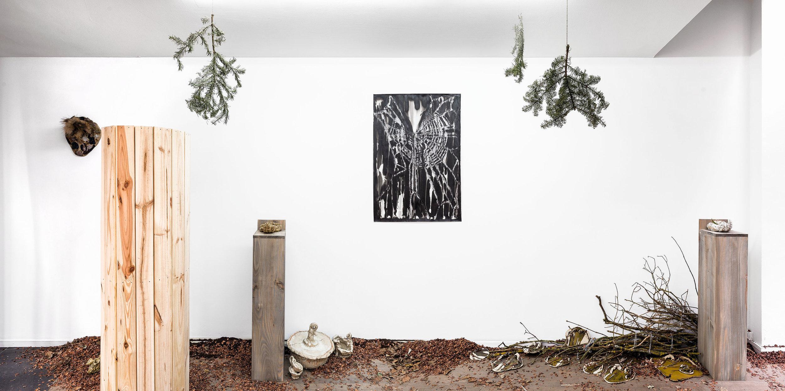 MERMIN-Caresse de forêt-1-OK.jpg
