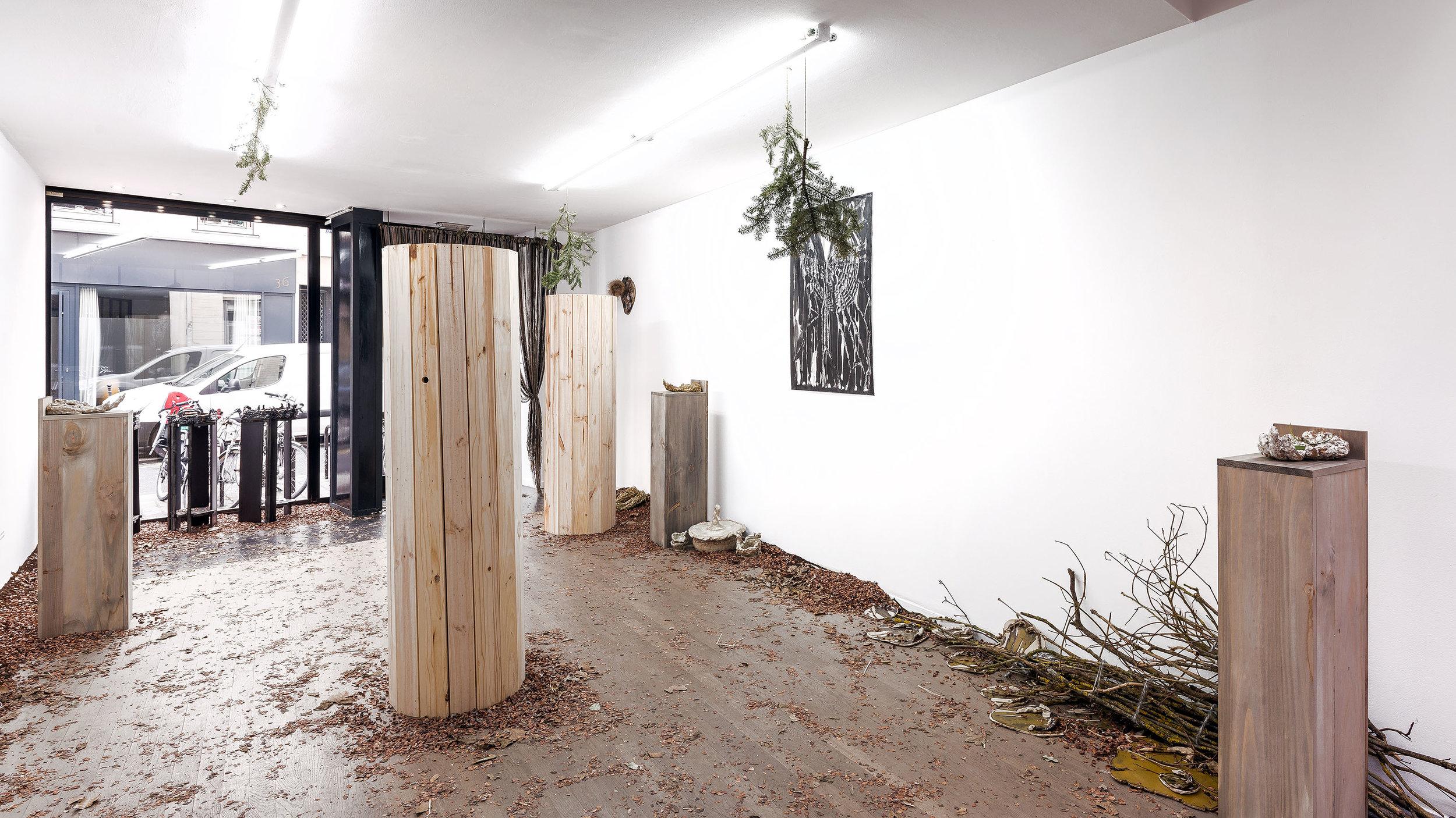 MERMIN-Caresse de forêt-2.jpg
