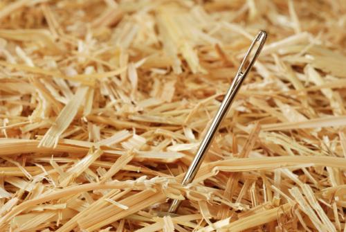 Needle.jpg