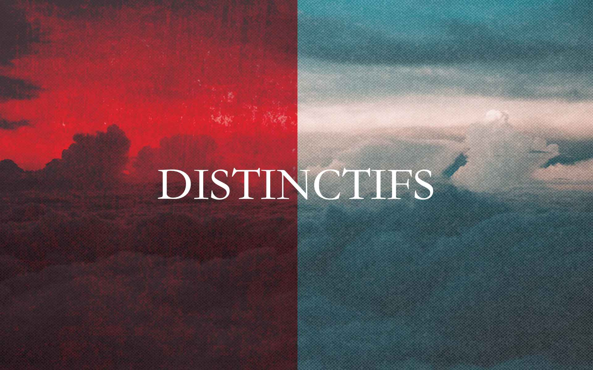 Distinctifs title web.jpg