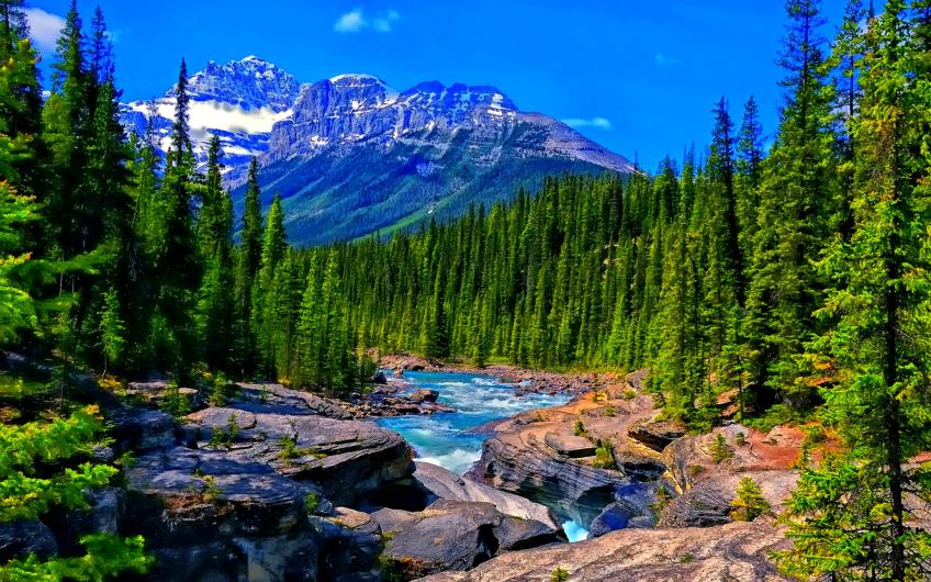 mountain-river-2997822.jpg