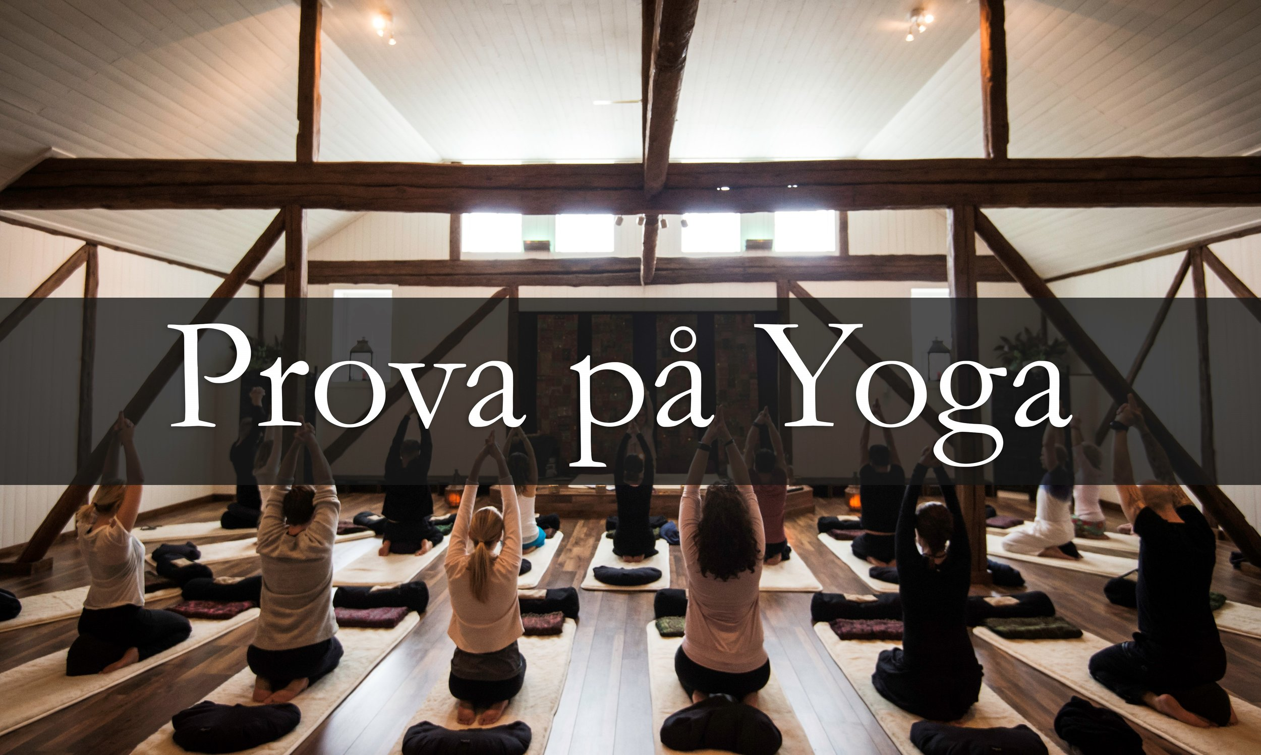 Prov yoga.jpg
