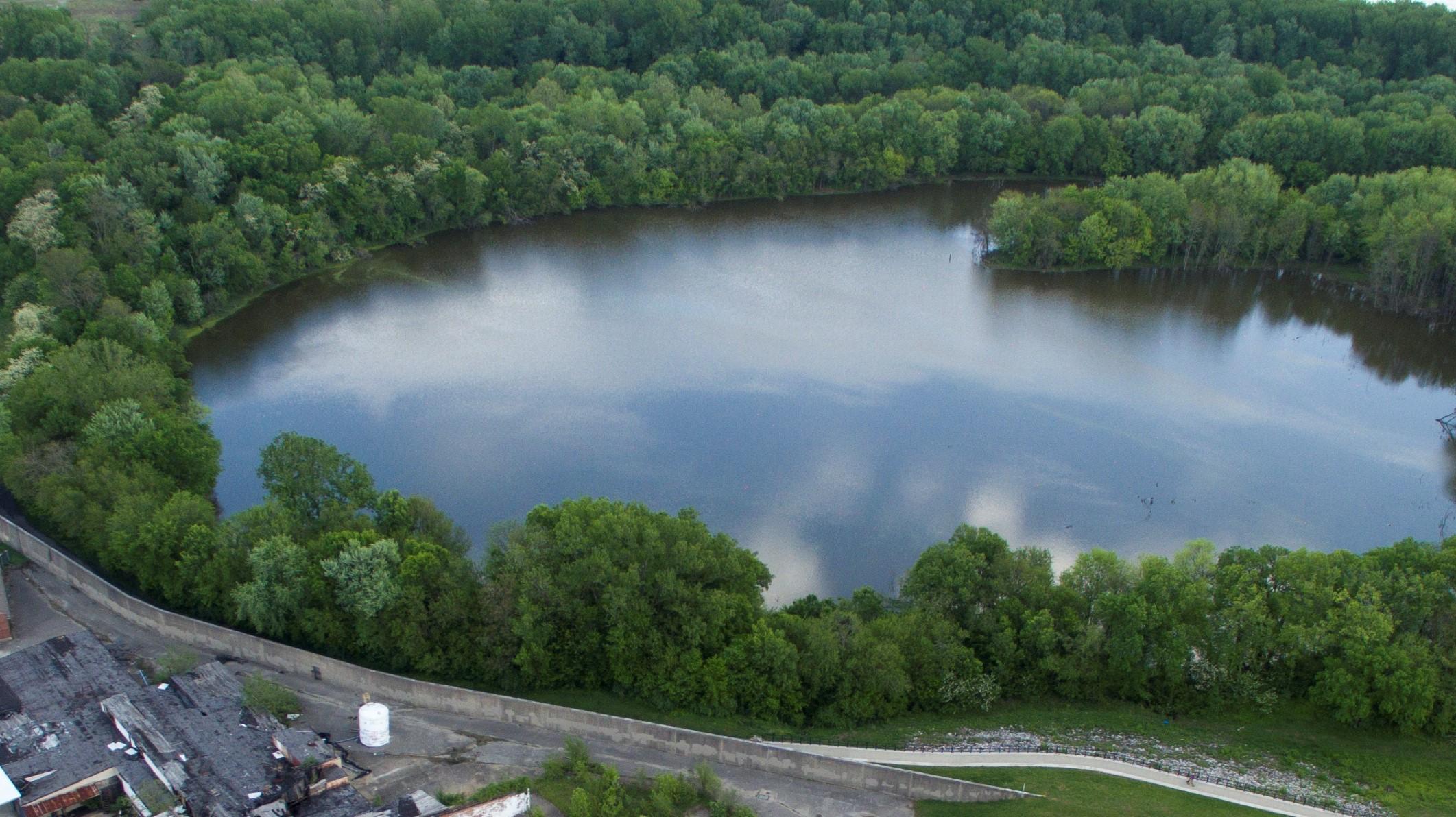 The Loop Island Wetlands.