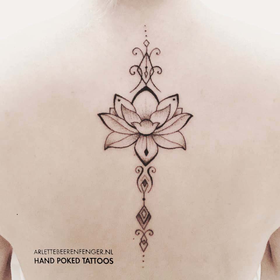 lotusdilay.jpg