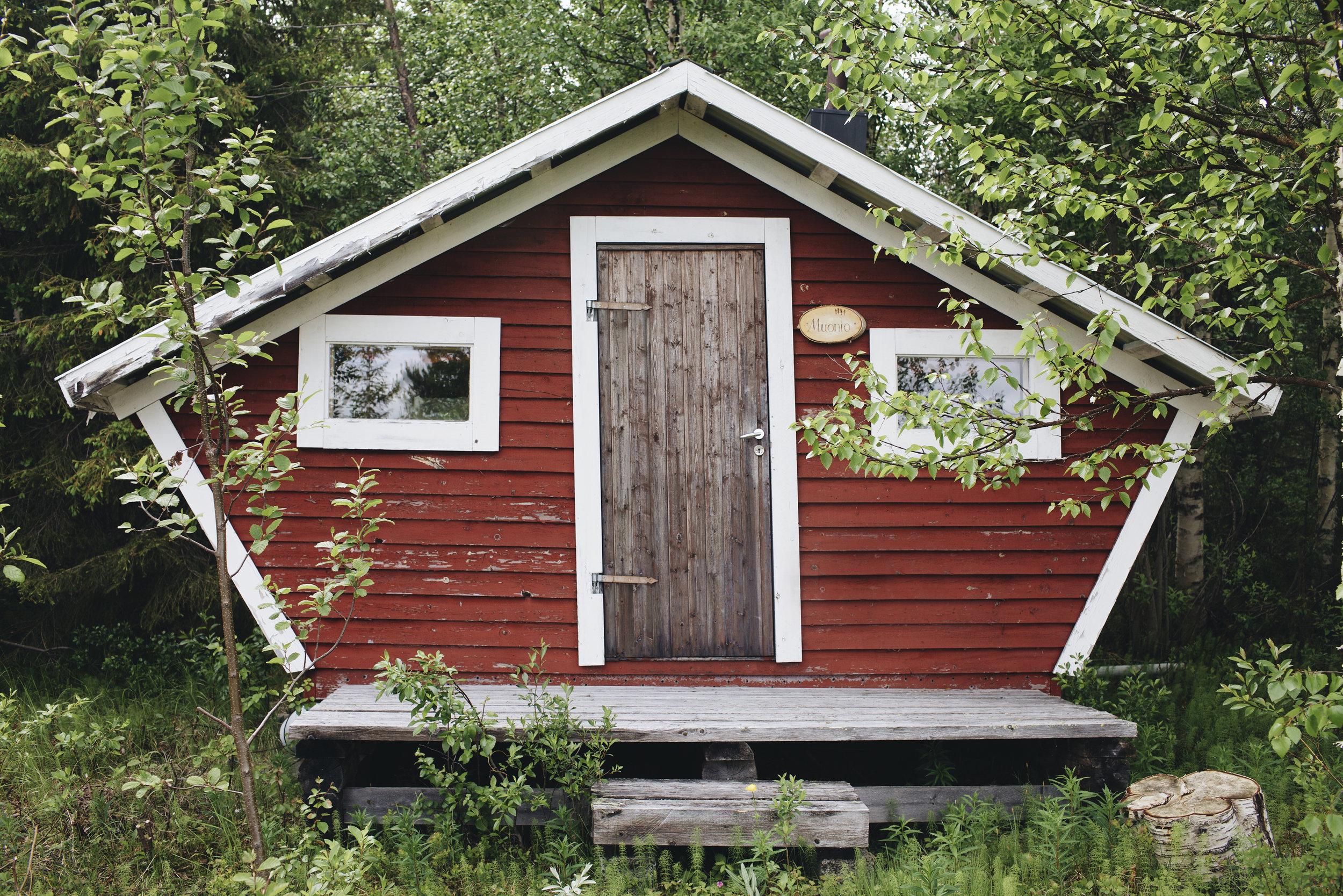 Hütte im Wald.jpg