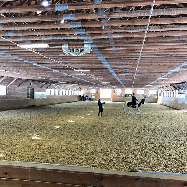 Sarah, Lizzie, and Kim are at the Patricia Kottas-Heldenberg clinic in Apple Knoll Farm in Millis, Massachusetts! We look forward to hosting her in spring 2019!