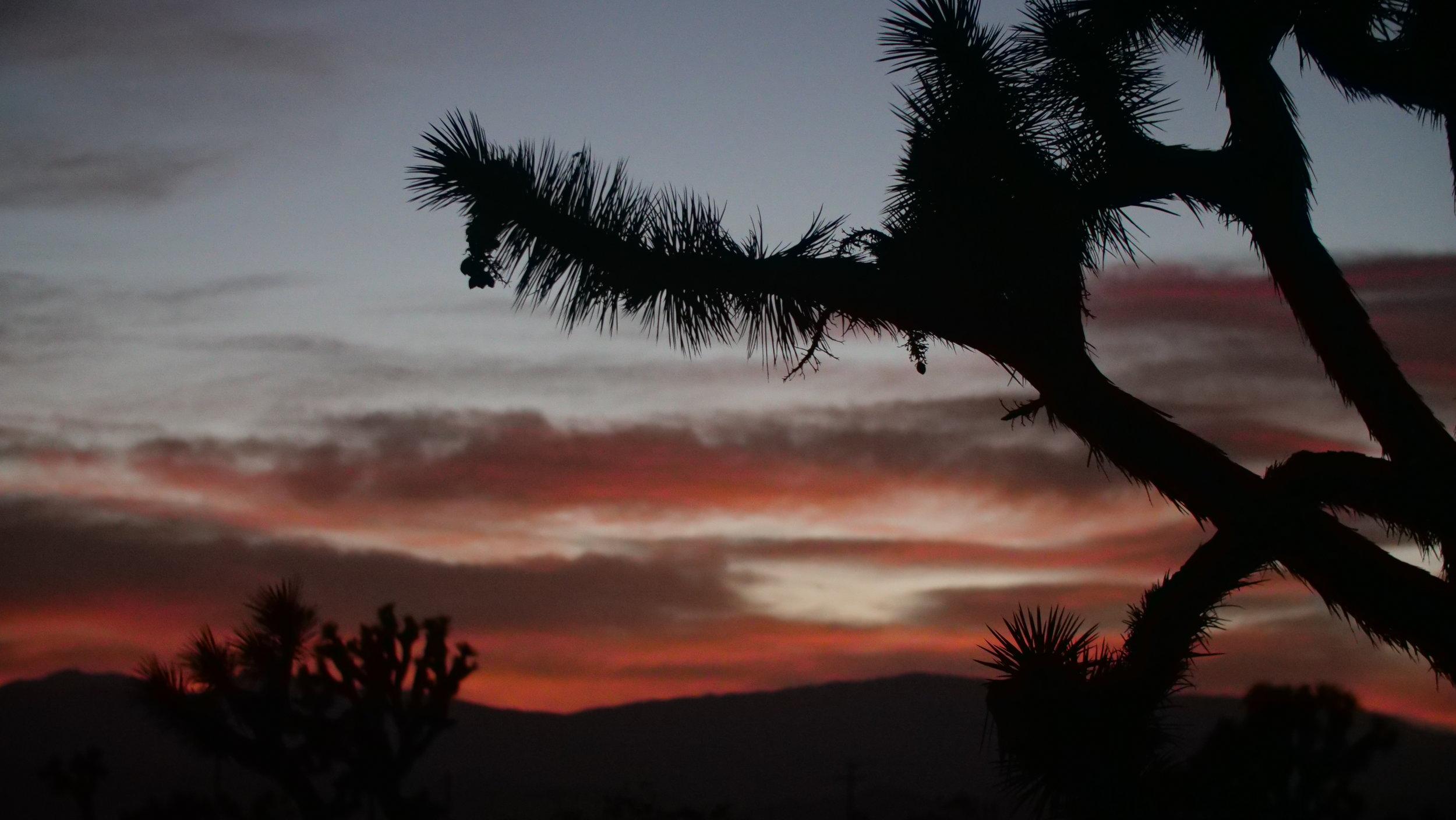 Landers Sunset