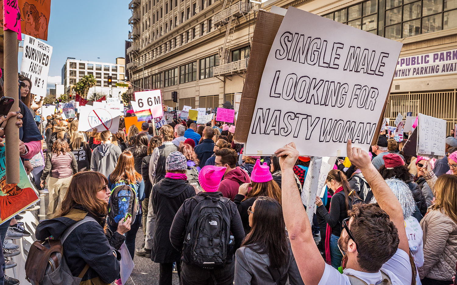 (2017)Signs in support of the Women's March came in every flavor. The influence of Hillary Clinton's campaign were overt.