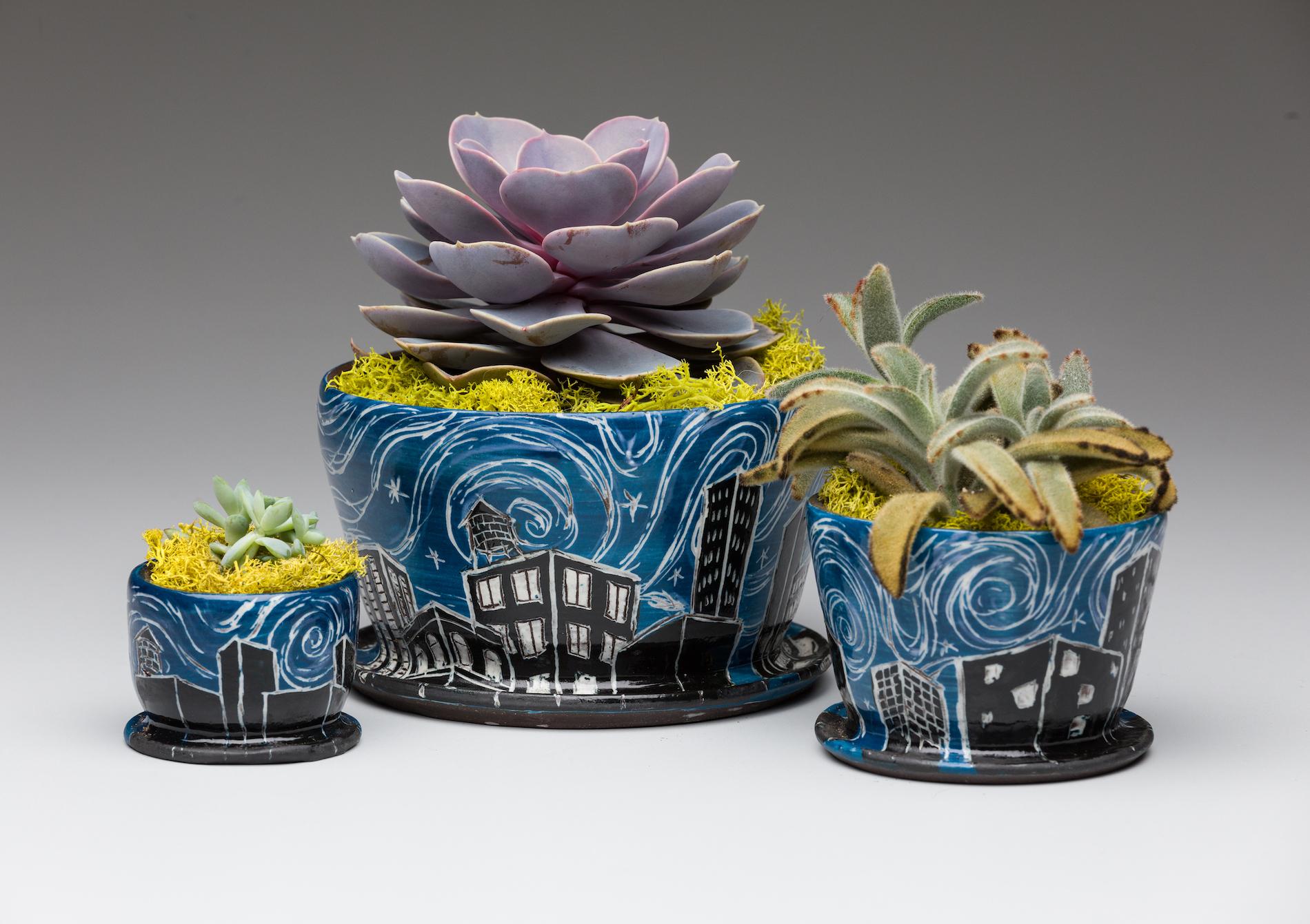 Blue Rooftop Gardens Group.jpg