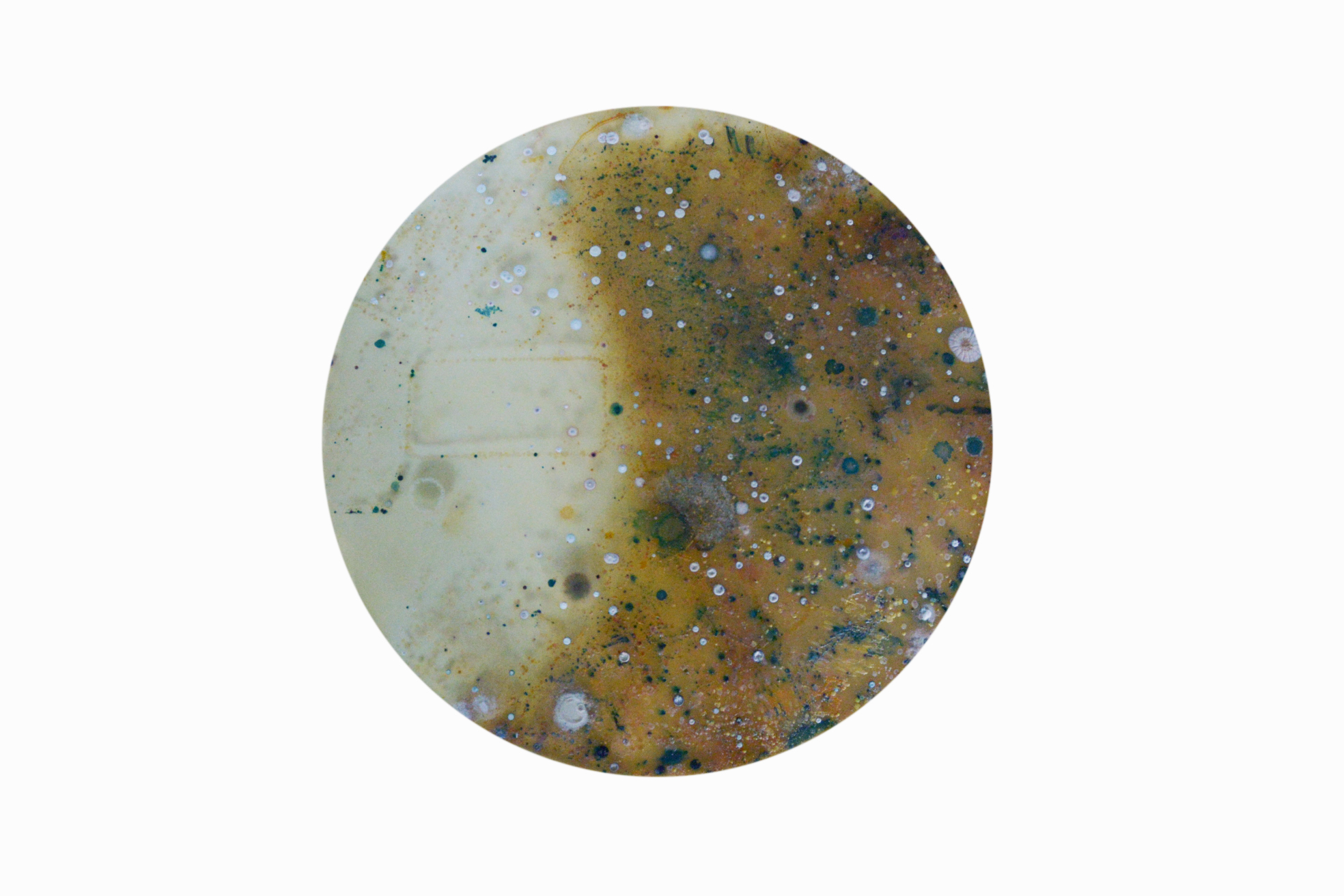 microbiome01.jpg