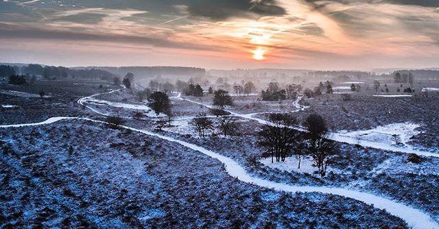 Snowy sunrise in the national park Hoge Kempen in Limburg. Heatherfields have this epical silence in winter. #hiking #nature #visitlimburg #visitmaasmechelen #belgium #heatherfields #anb #nationaalparkhogekempen #inspirepro #dji #sunrise #winter #snow