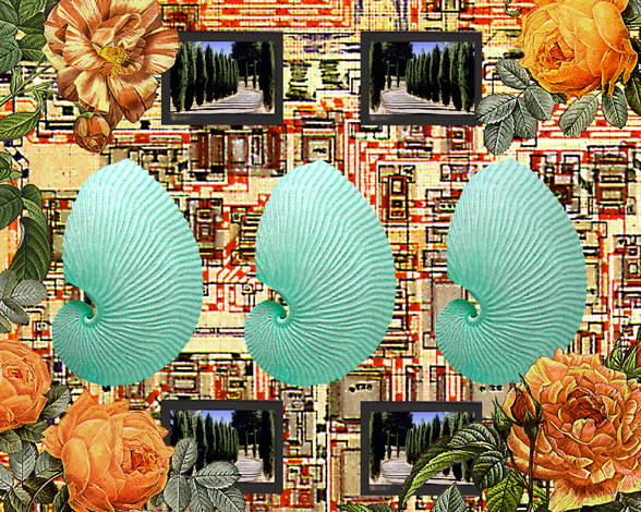 Shell Game   Digital Collage Size Variable