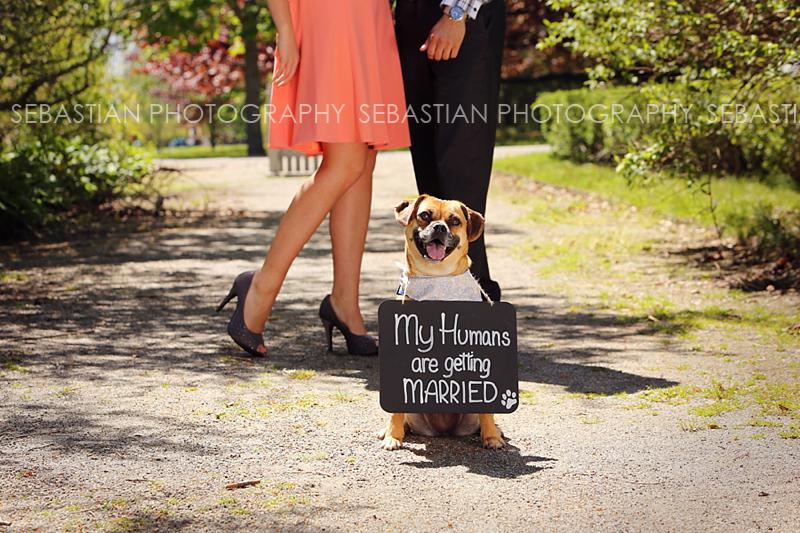 Sebastian_Photography_Engagement_Harkness_02.jpg