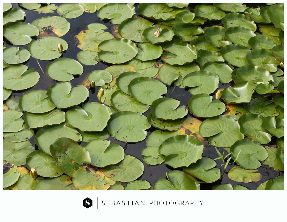 Sebastian Photography_CT Wedding Photographer_Lake of Isle Wedding_10207063.jpg