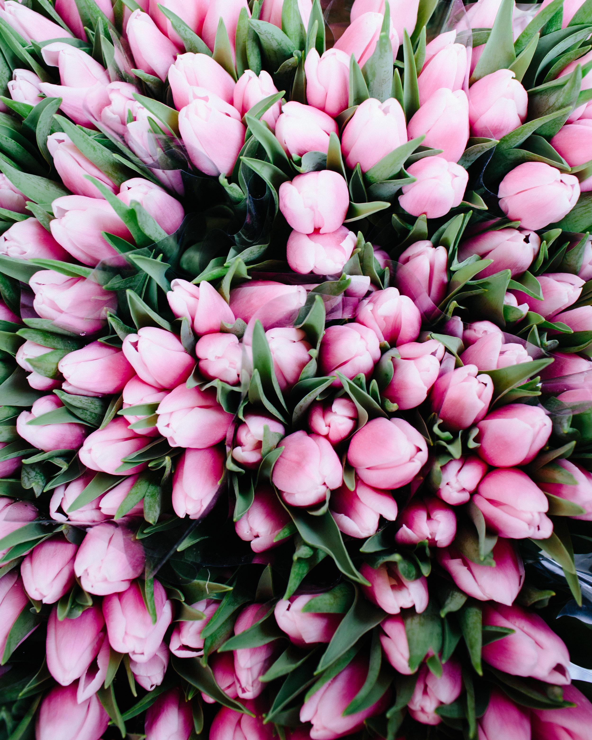 seeKew GardensColombia Road Flower MarketPortobello Road MarketOld Spitalfields MarketShoreditch NeighboorhoodPrimrose Hill -