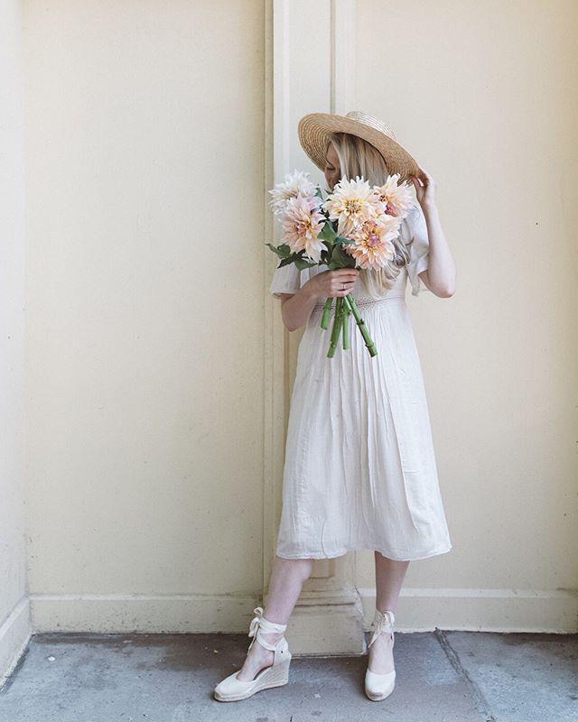 summer flowers 🌸✨