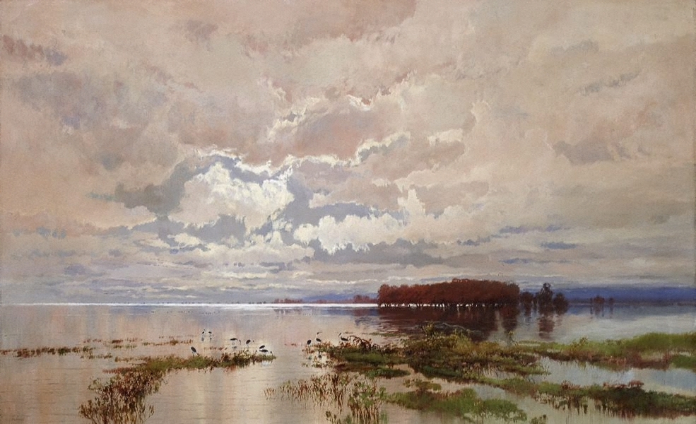 The Flood Of The Darling 1895