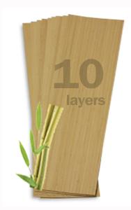 Bamboo10Pack_lg.jpg