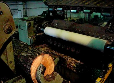 Click the image to see a video of a rotary mill peeling logs