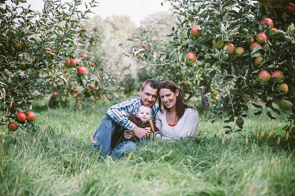 Behling Orchard.jpg