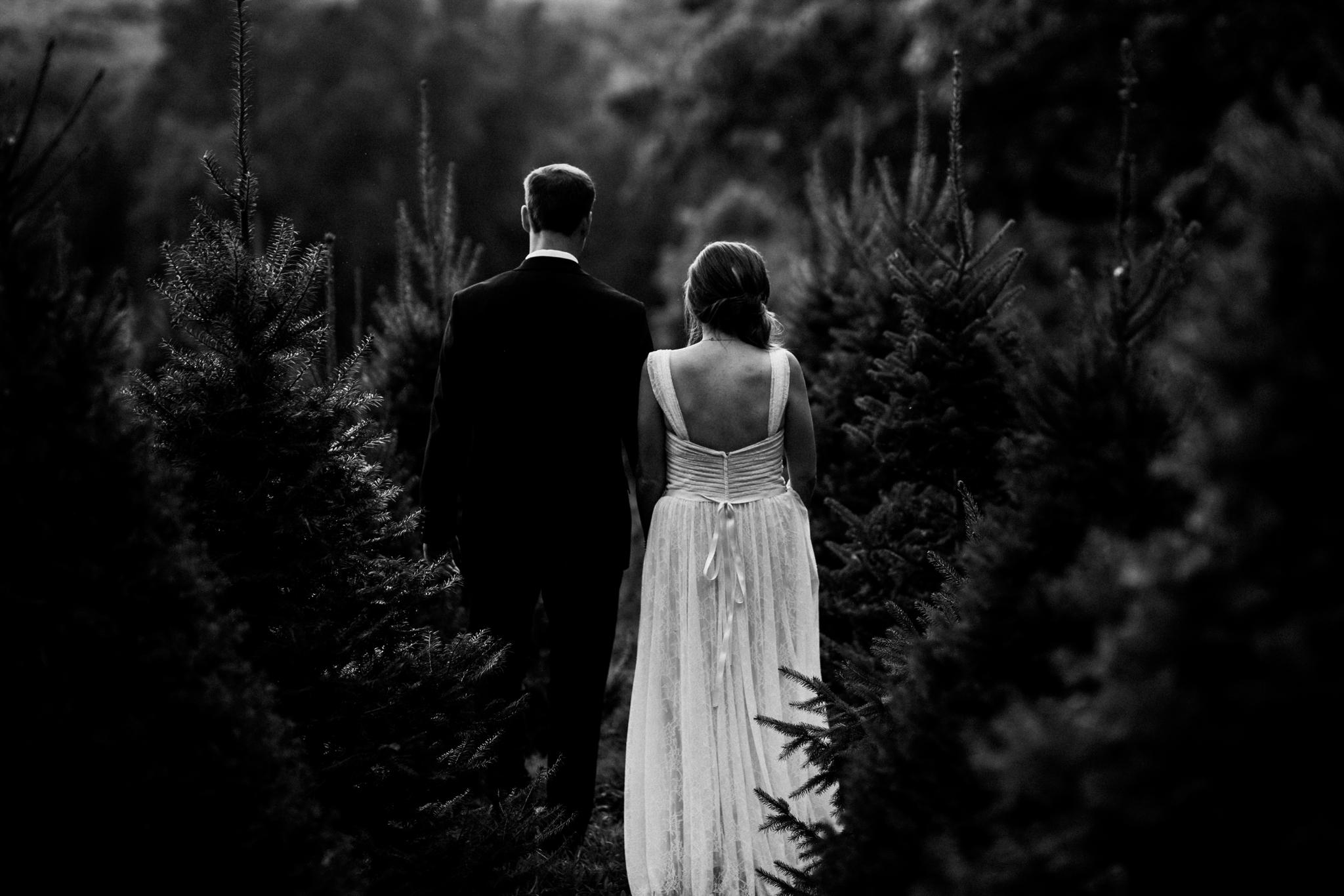 asheville-north-carolina-wedding-photographer_2502.jpg