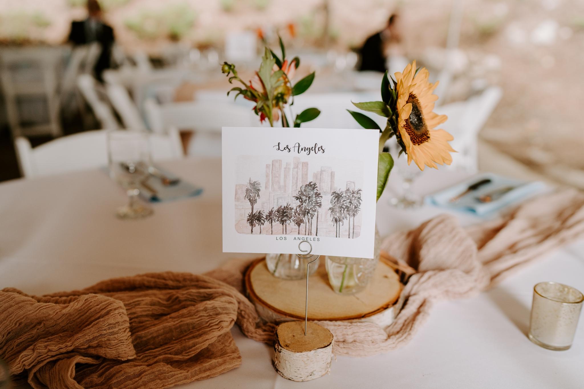 asheville-north-carolina-wedding-photographer_2510.jpg