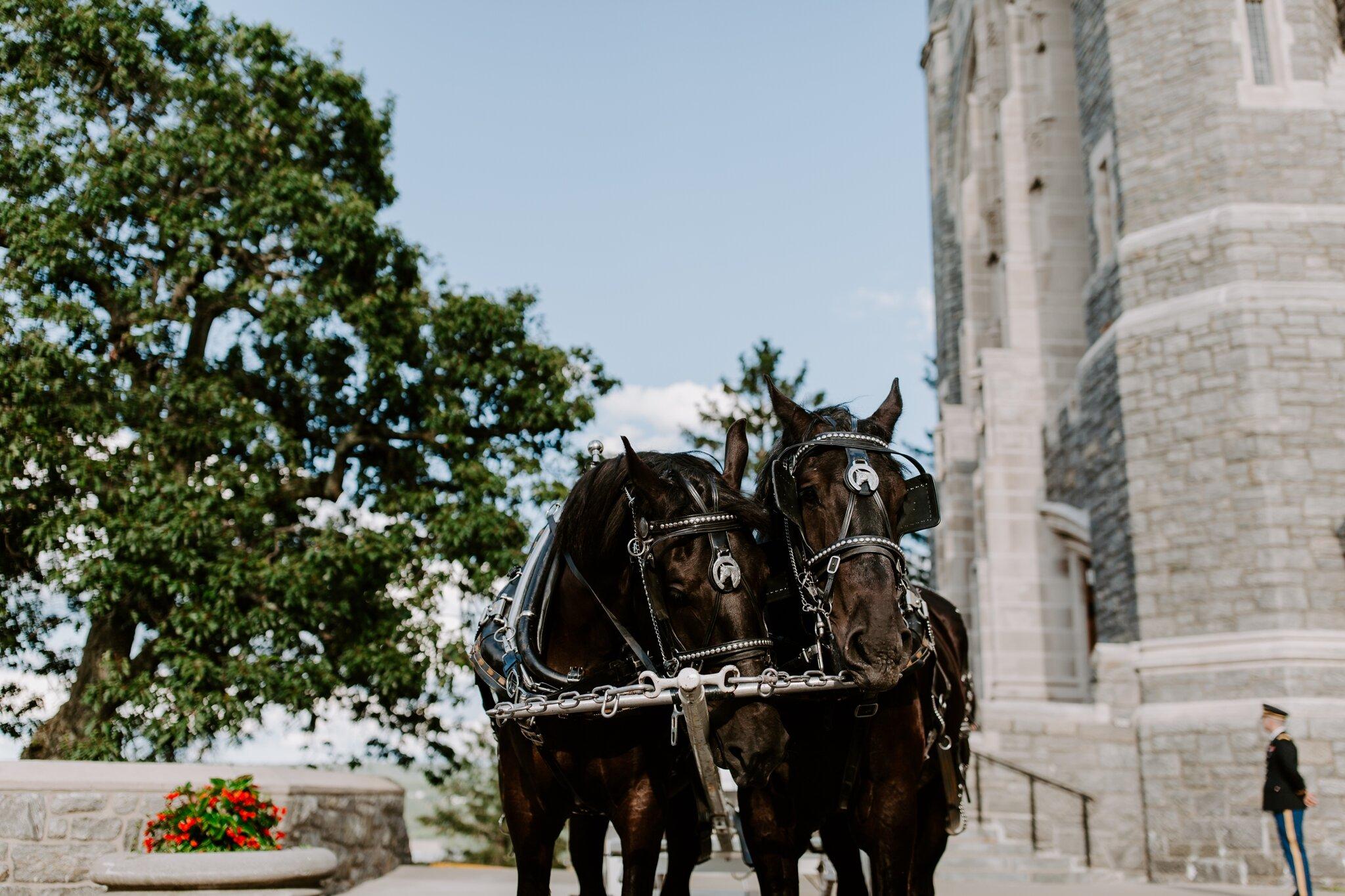 asheville-north-carolina-wedding-photographer_2601.jpg
