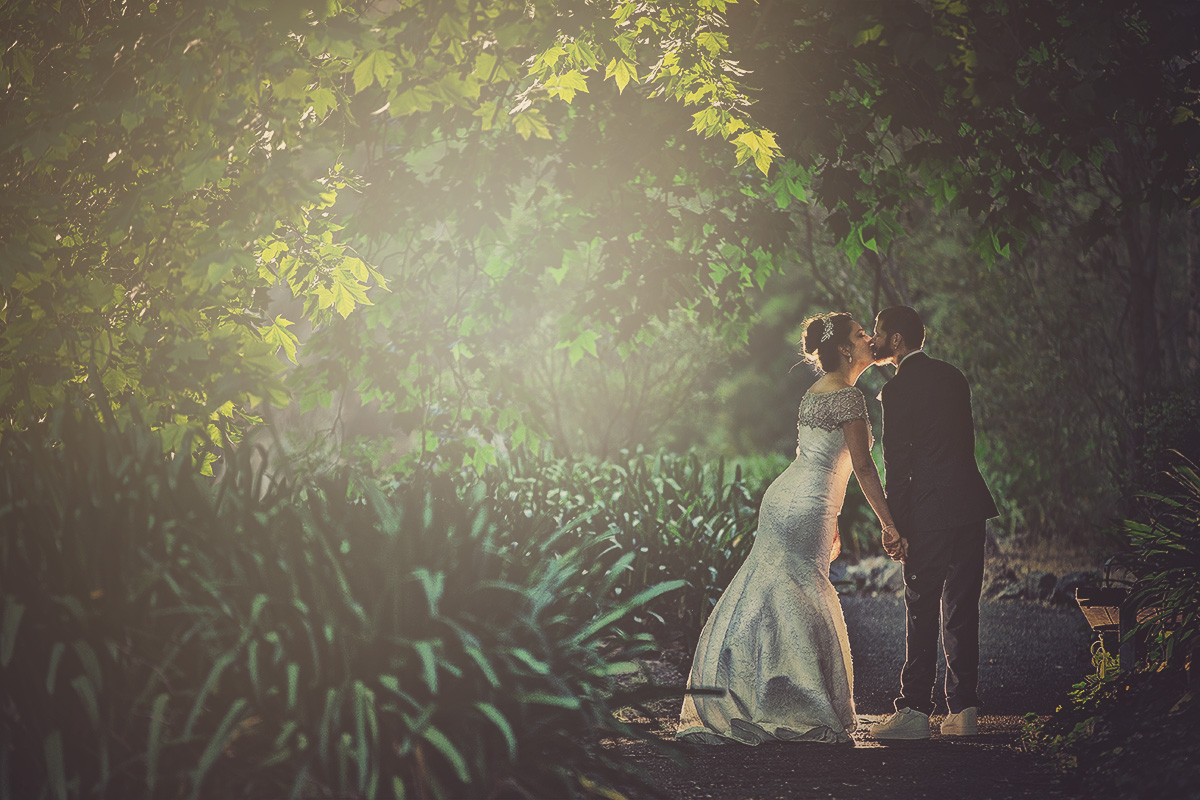 wedding venue utopia waterfall gully fairytale