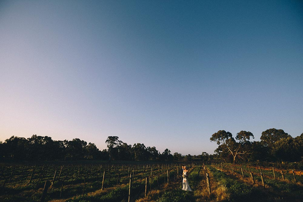 vintage-barossa-photo0131.jpg