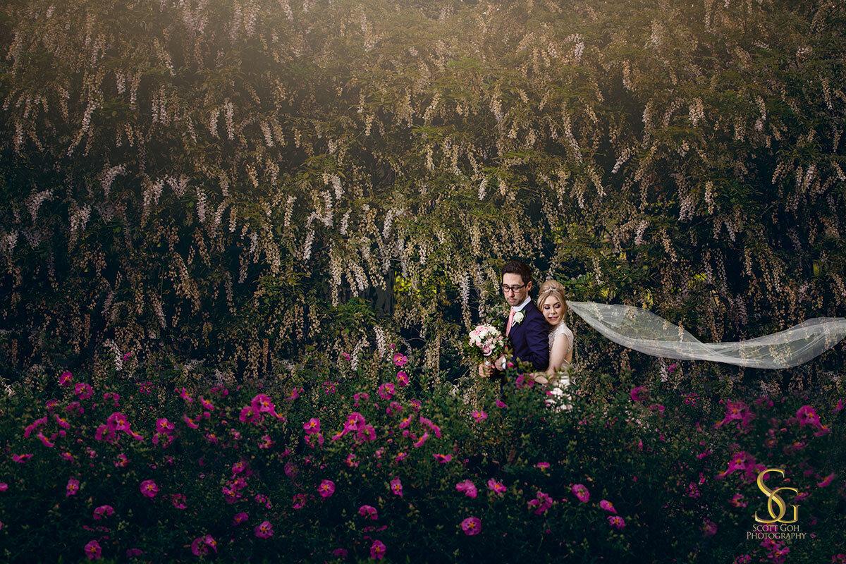 wisteria Adelaide botanic garden wedding
