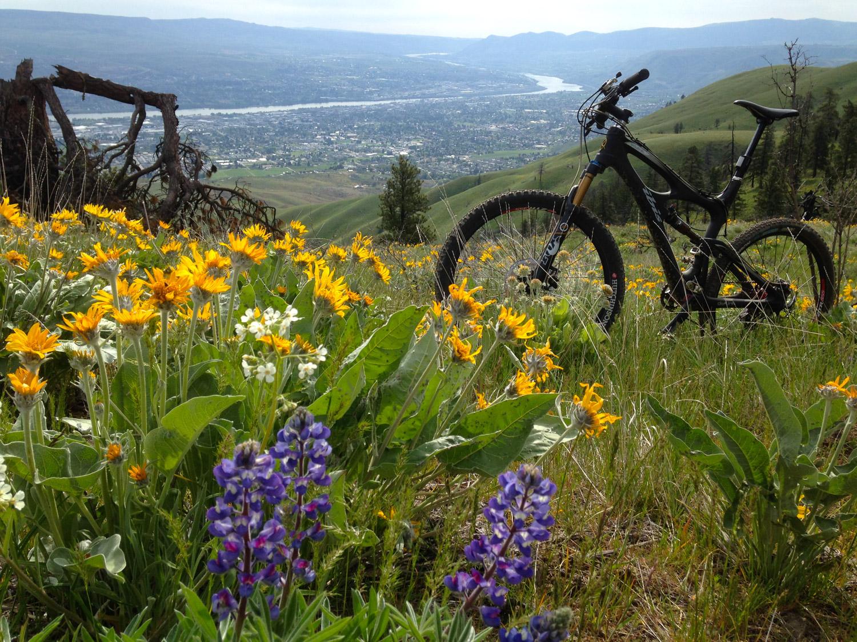 Sage Hills Wenatchee
