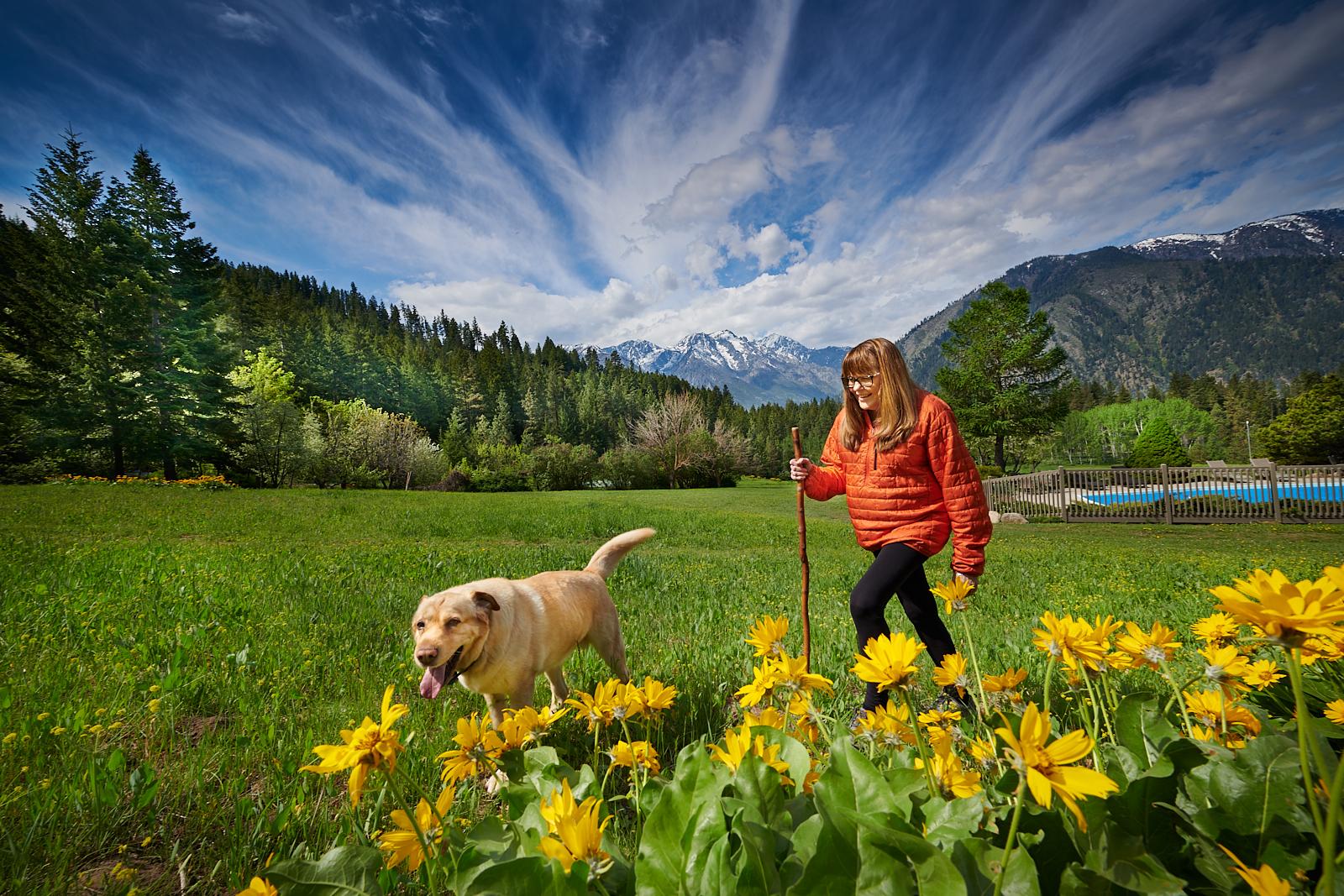 Millie... Trail Dog