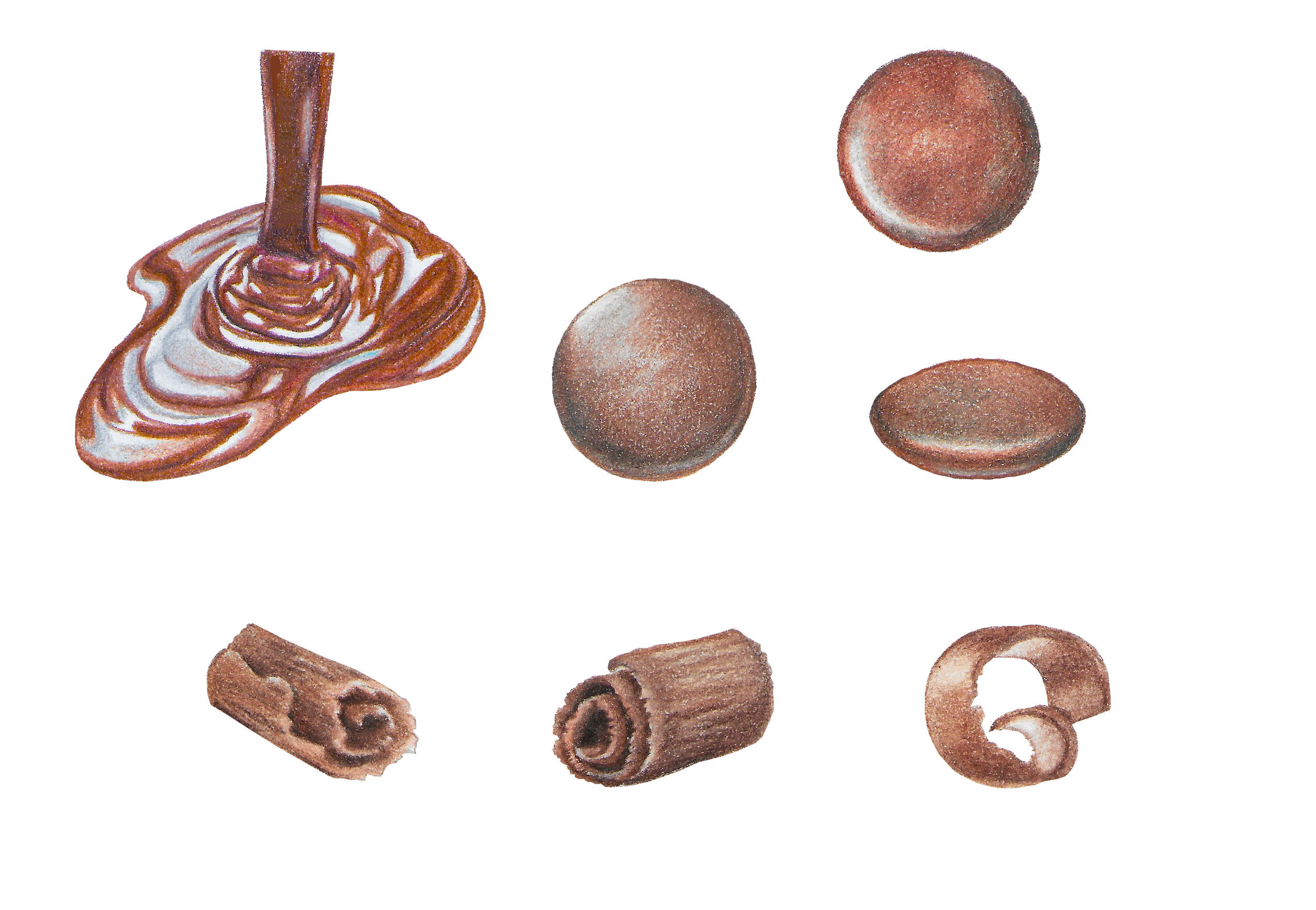 Illustrations for various forms of chocolate
