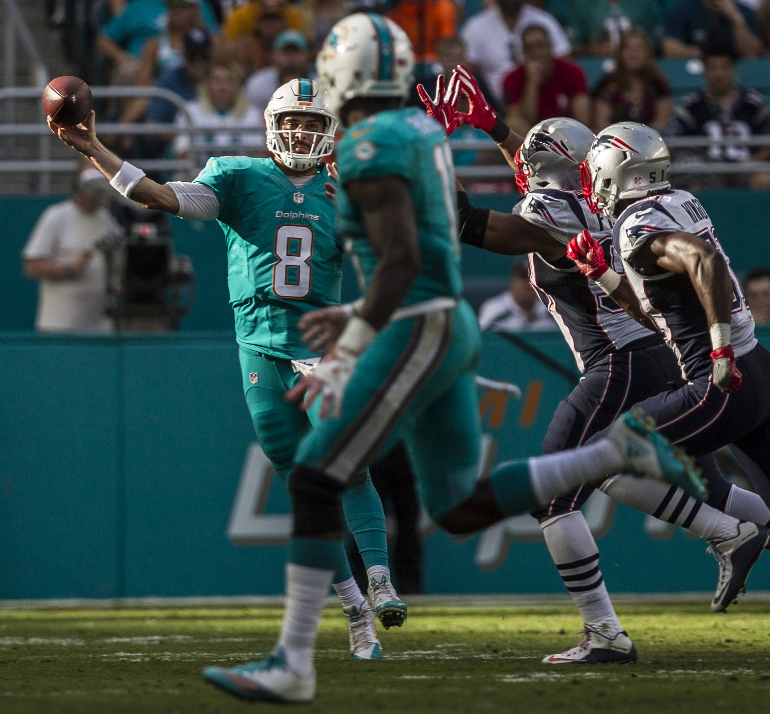 Miami Dolphins quarterback Matt Moore (8) attempts to complete a pass while being hurried by the New England Patriots pass rush at Hard Rock Stadium in Miami Gardens, Florida, January 1, 2017.