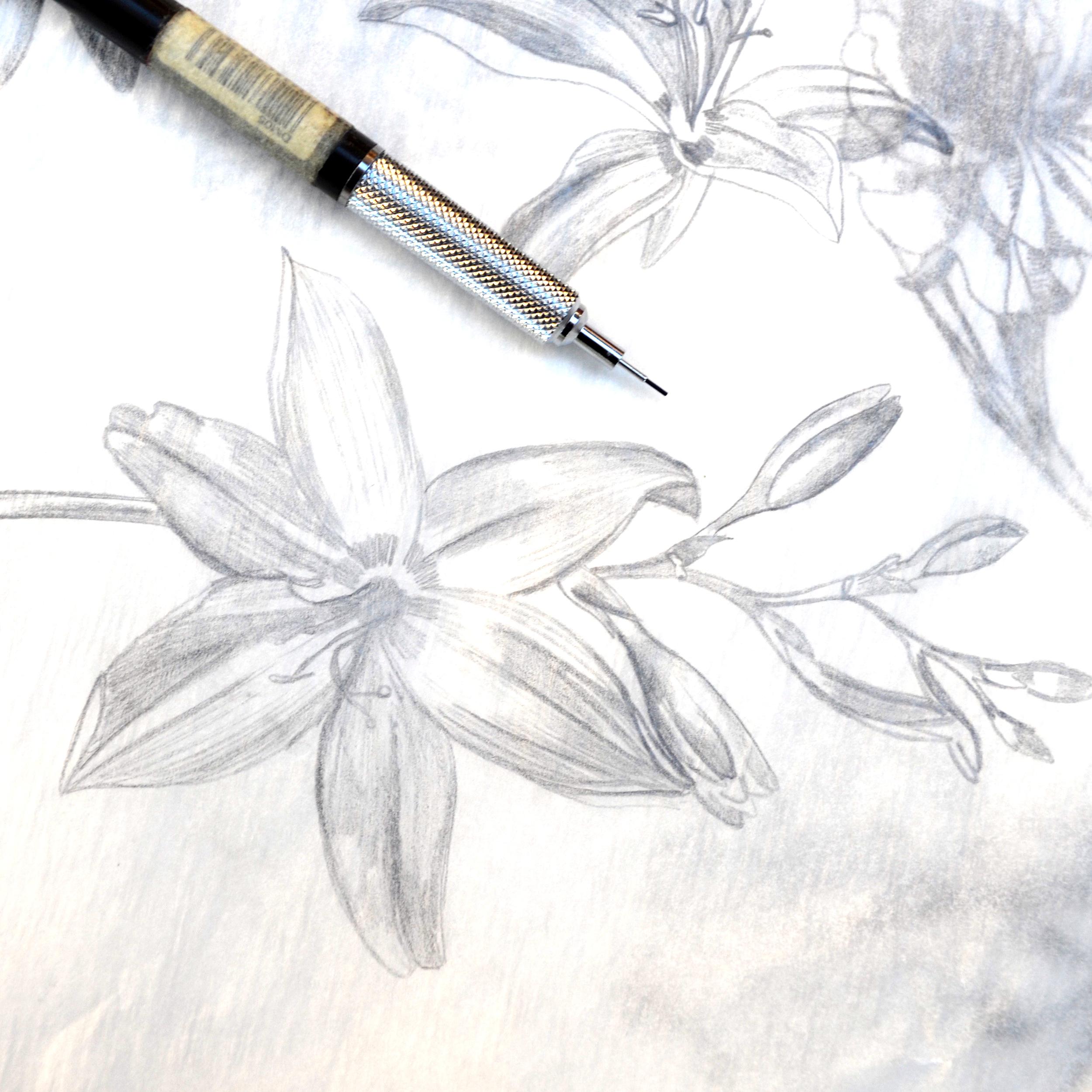 progressflower1.jpg