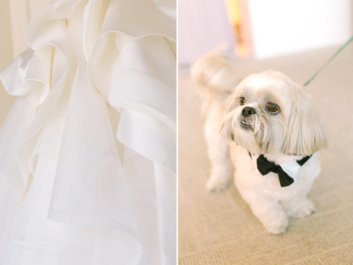Coco, their pup, was the ringbearer of the day...and he did a fantastic job!