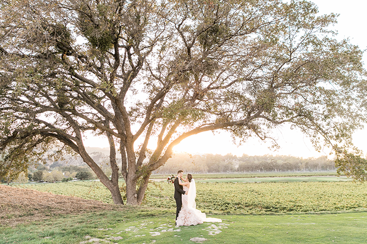 wente-vineyards-wedding-15