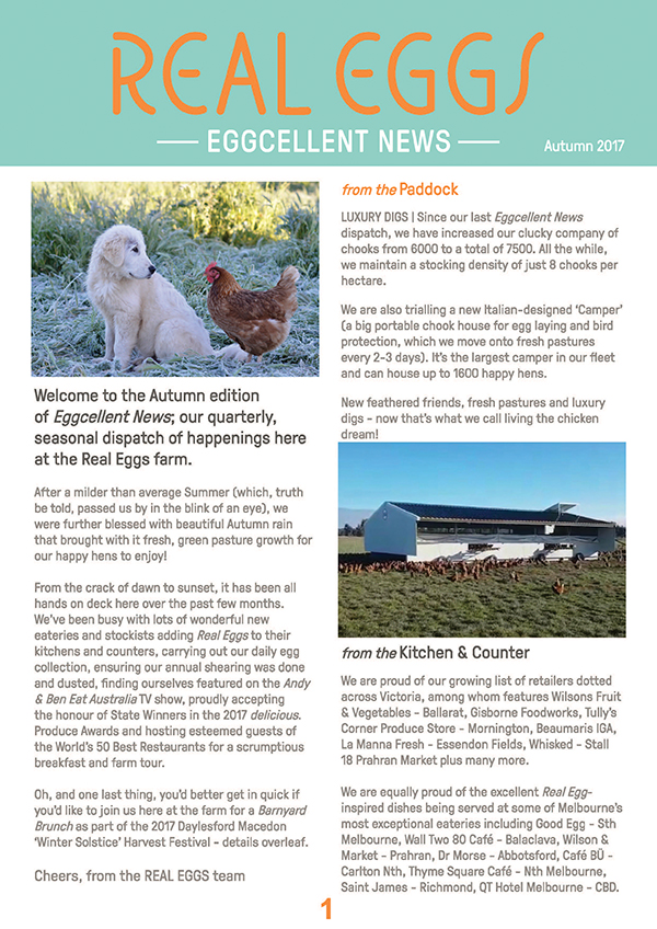 real eggs  print newsletter