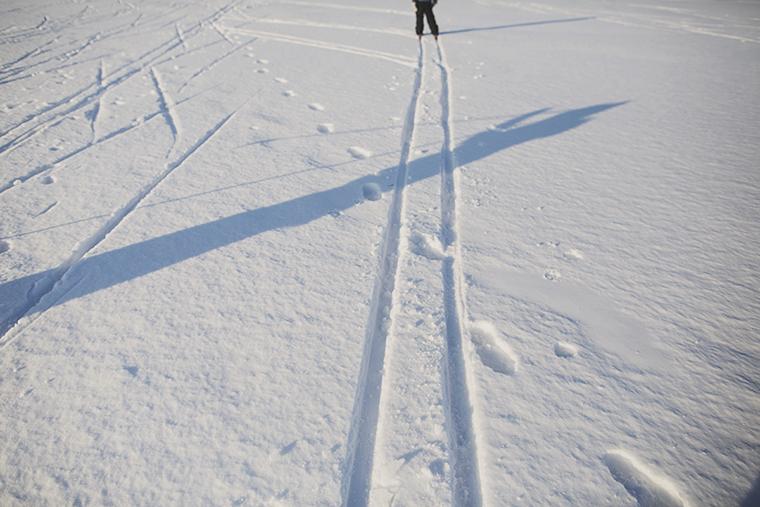 ski29web